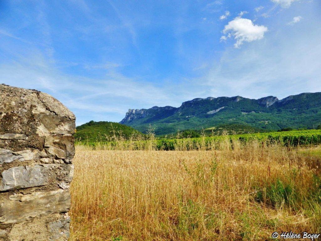 Gite-Planchetieu-Drome-Vercors-Diois-vue-montagne