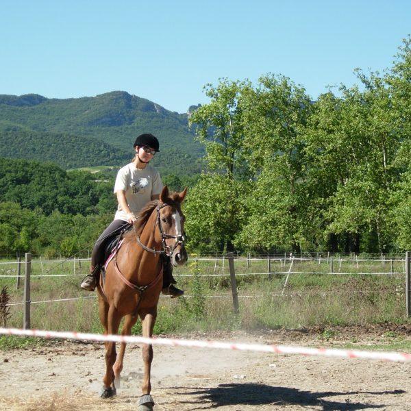 equitation-drome